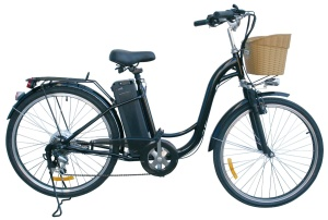 watseka bike full look with basket